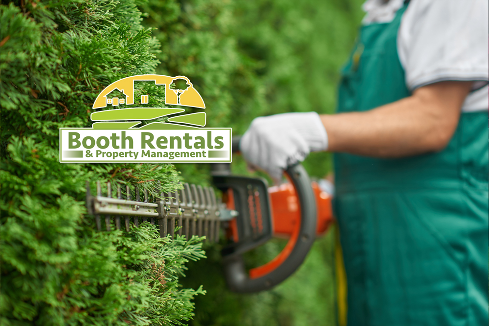 Property-Management_Property-Maintenance-Company-in-Plattsburgh-NY_lawn-care_tree-and-shrub-pruning